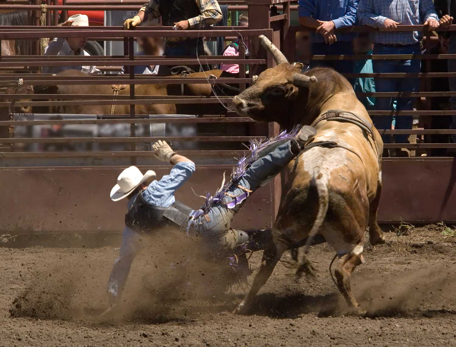 Buy Cheap Prca Rodeo Tickets Prca Rodeo Promo Code